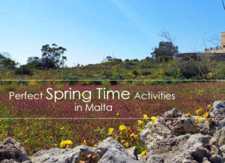 Spring in Malta